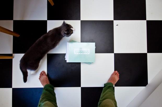 Min katt Pixel, en geting - och boken så klart.